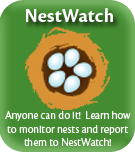 Cornell Nestwatch program website