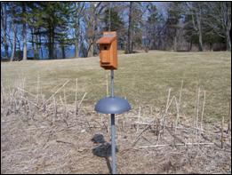 lake bluff sanctuary nest box project
